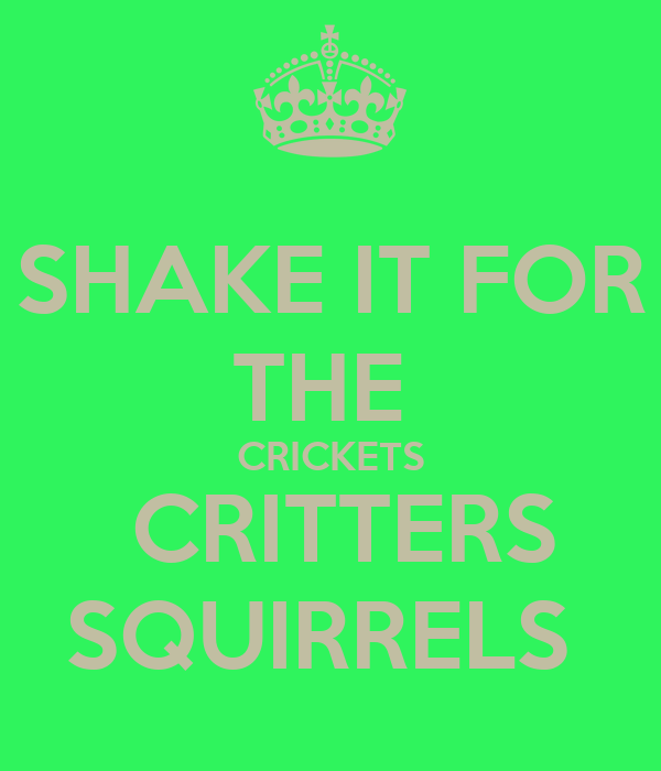 SHAKE IT FOR THE  CRICKETS  CRITTERS SQUIRRELS