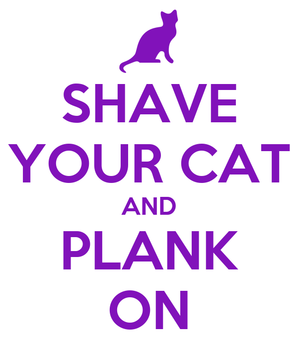 SHAVE YOUR CAT AND PLANK ON