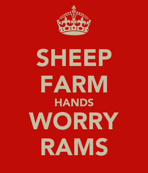 SHEEP FARM HANDS WORRY RAMS