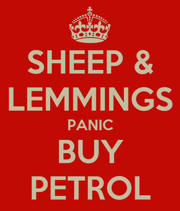 SHEEP & LEMMINGS PANIC BUY PETROL