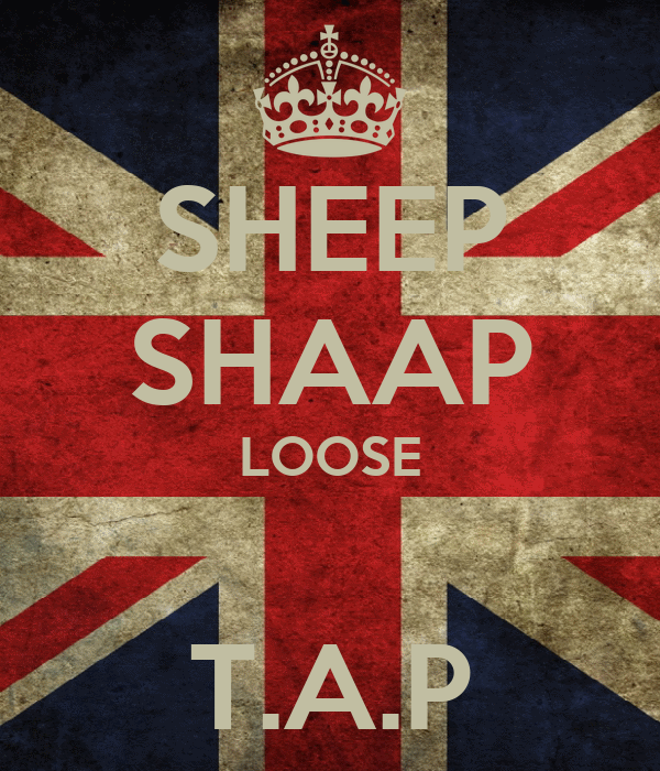 SHEEP SHAAP LOOSE  T.A.P