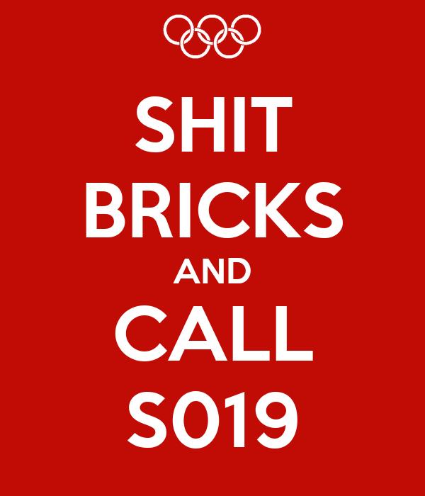 SHIT BRICKS AND CALL S019