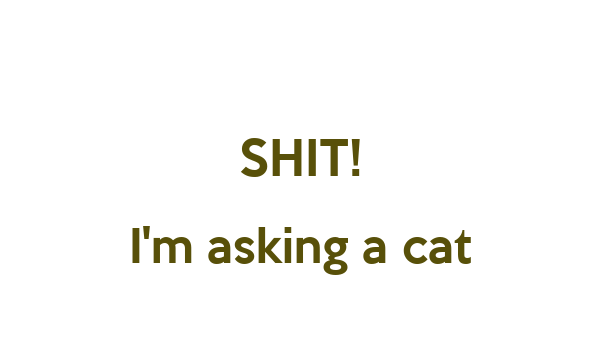 SHIT! I'm asking a cat