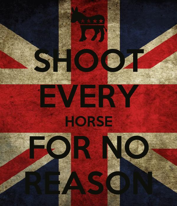 SHOOT EVERY HORSE FOR NO REASON