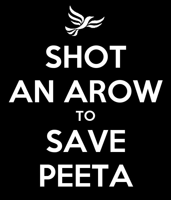 SHOT AN AROW TO SAVE PEETA