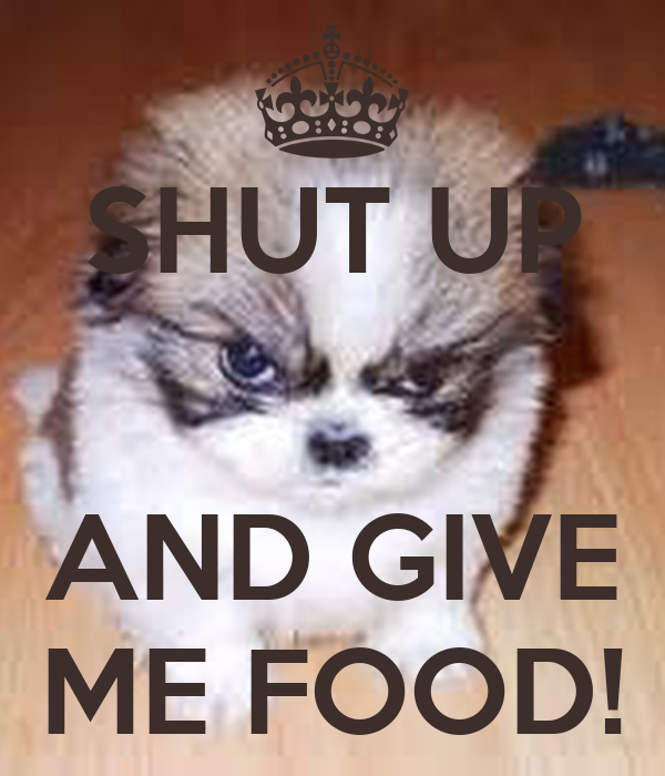 SHUT UP   AND GIVE ME FOOD!