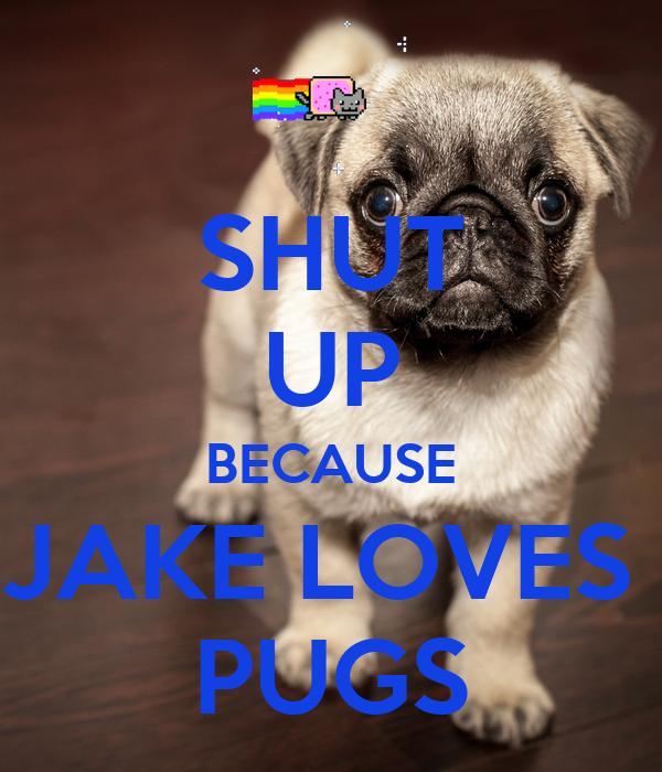 SHUT UP BECAUSE JAKE LOVES  PUGS