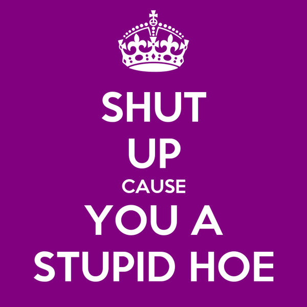SHUT UP CAUSE YOU A STUPID HOE