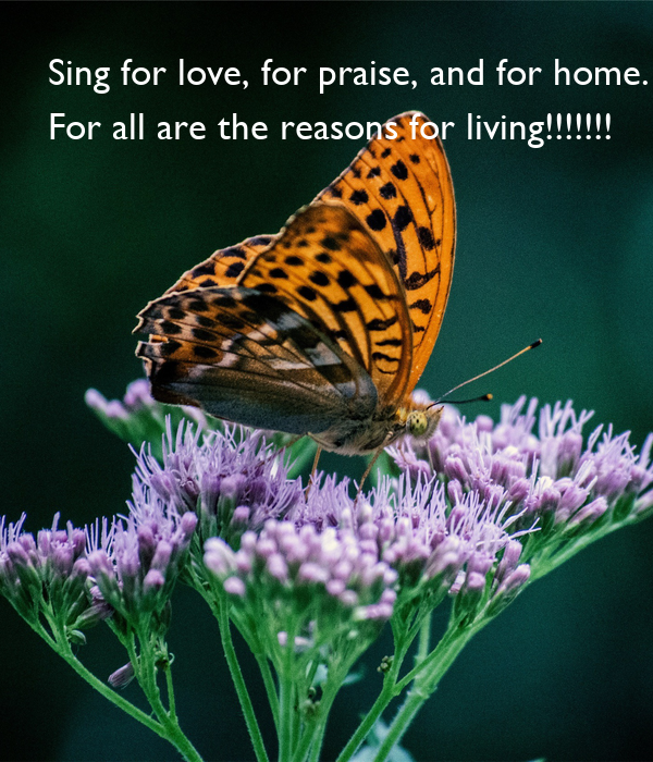Sing for love, for praise, and for home.  For all are the reasons for living!!!!!!!