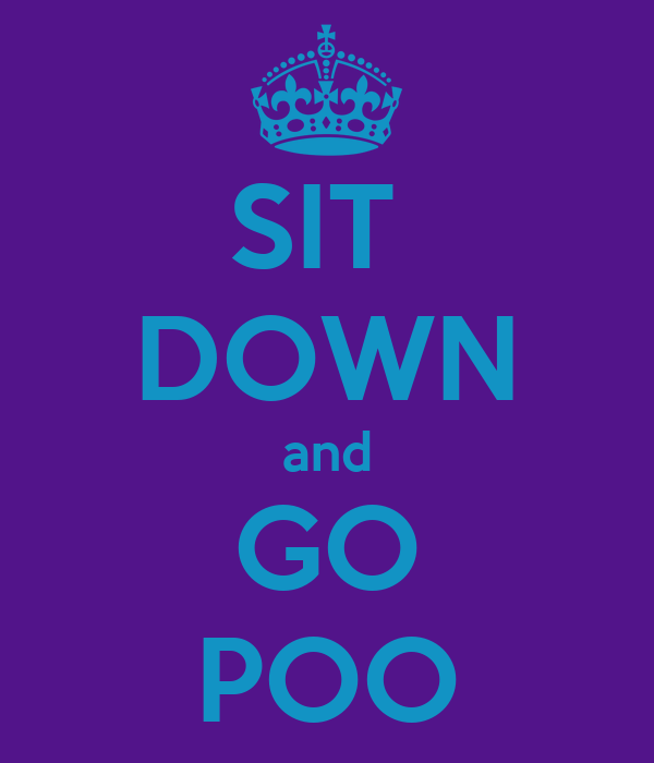 SIT  DOWN and GO POO
