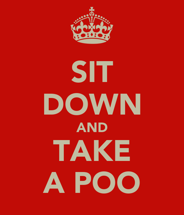 SIT DOWN AND TAKE A POO
