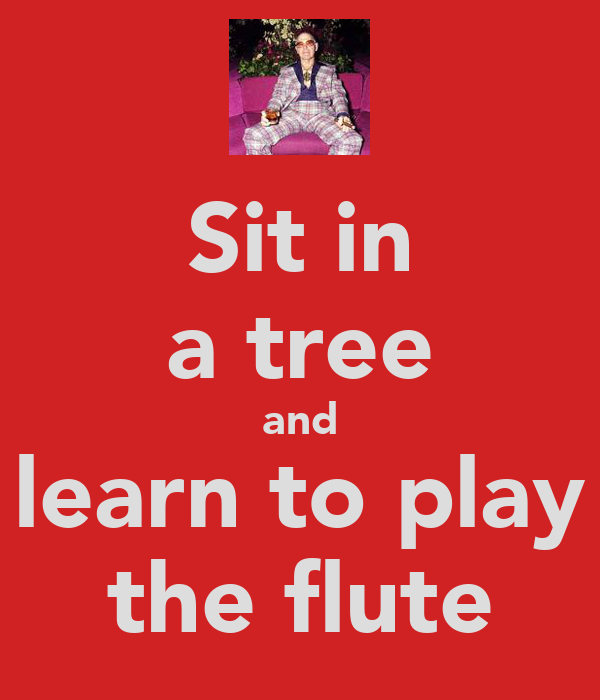 Sit in a tree and learn to play the flute