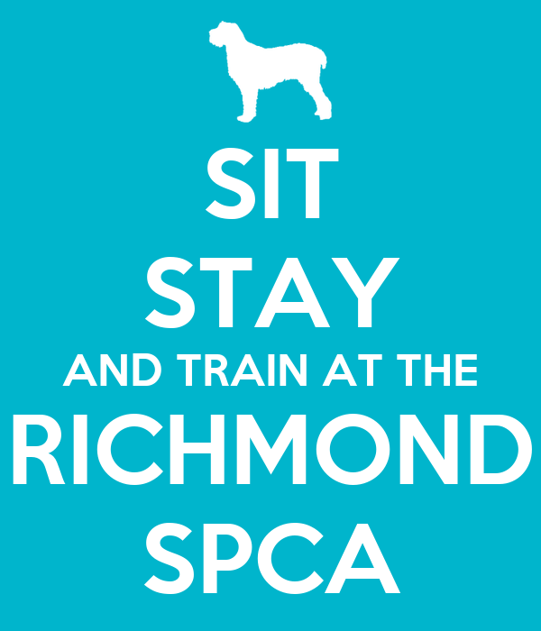 SIT STAY AND TRAIN AT THE RICHMOND SPCA