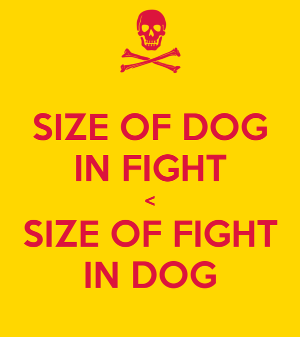 SIZE OF DOG IN FIGHT < SIZE OF FIGHT IN DOG