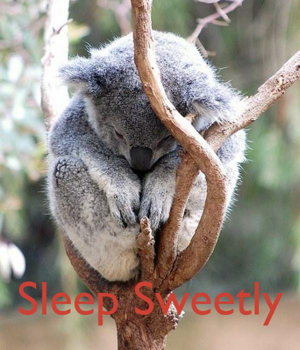 Sleep Sweetly