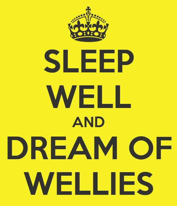 SLEEP WELL AND DREAM OF WELLIES