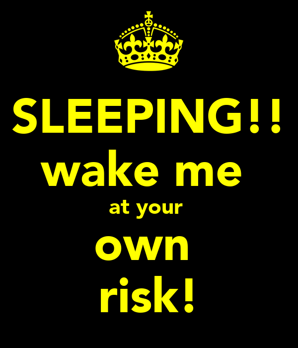 SLEEPING!! wake me  at your  own  risk!