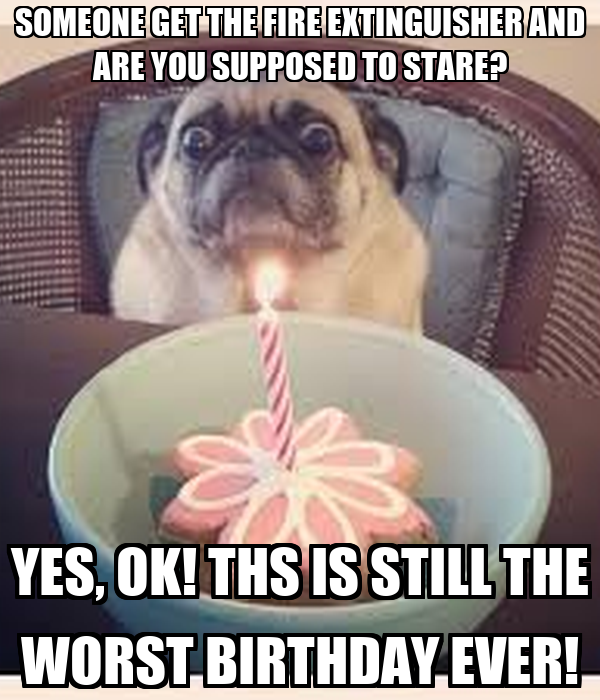 the worst birthday ever The 21 worst birthdays, ranked your sibling will, for the rest of his or her life, see the day you were born as the worst birthday ever and will get back at you by stealing your presents, probably well into your 30s 8 the same.