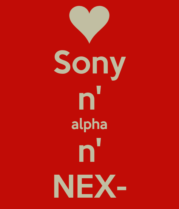 Sony n' alpha n' NEX-