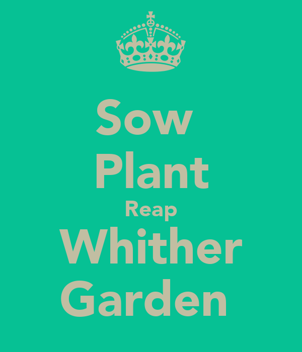 Sow  Plant Reap Whither Garden