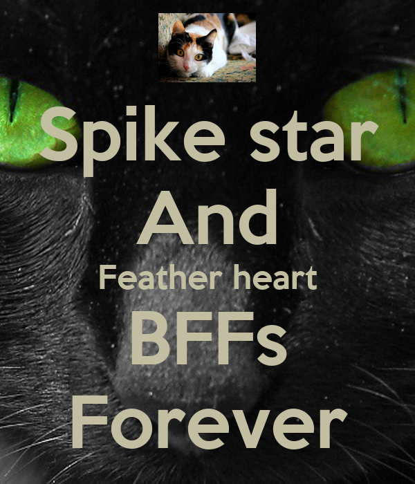 Spike star And Feather heart BFFs Forever