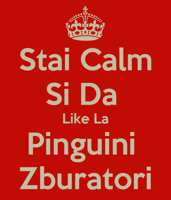 Stai Calm Si Da  Like La Pinguini  Zburatori