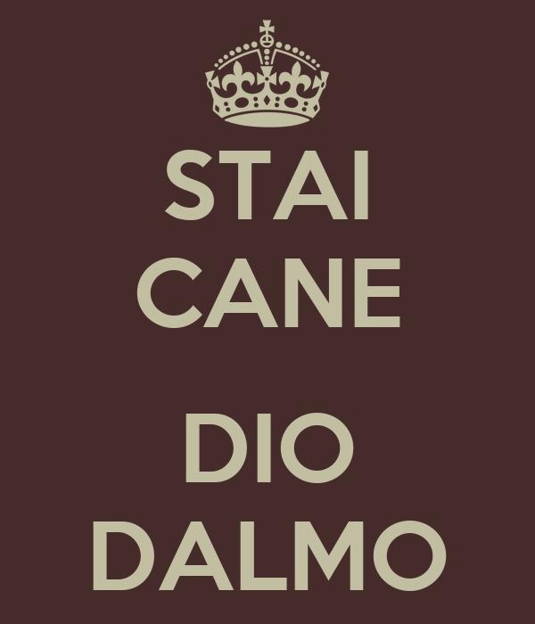 STAI CANE  DIO DALMO