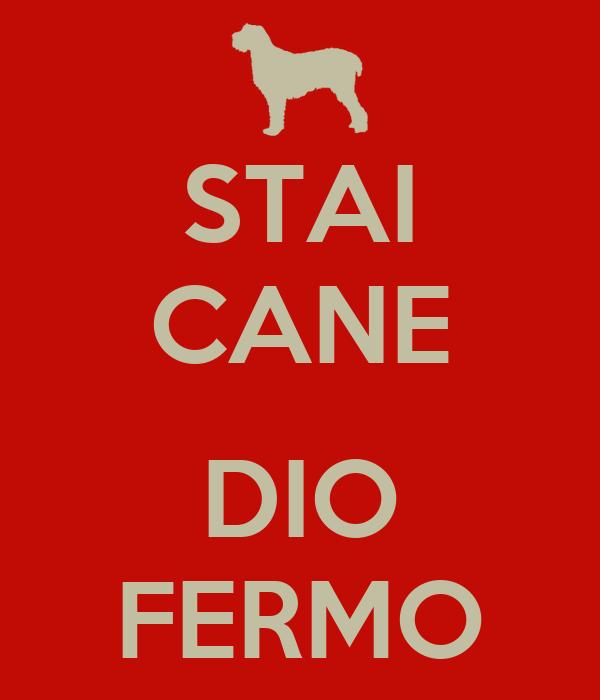 STAI CANE  DIO FERMO