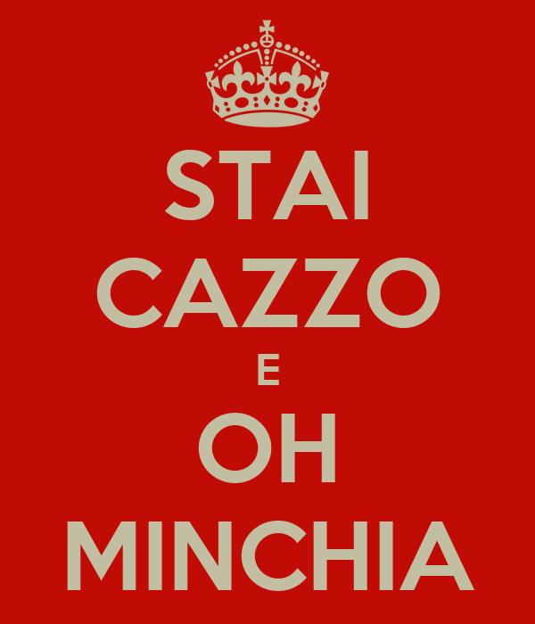 STAI CAZZO E OH MINCHIA