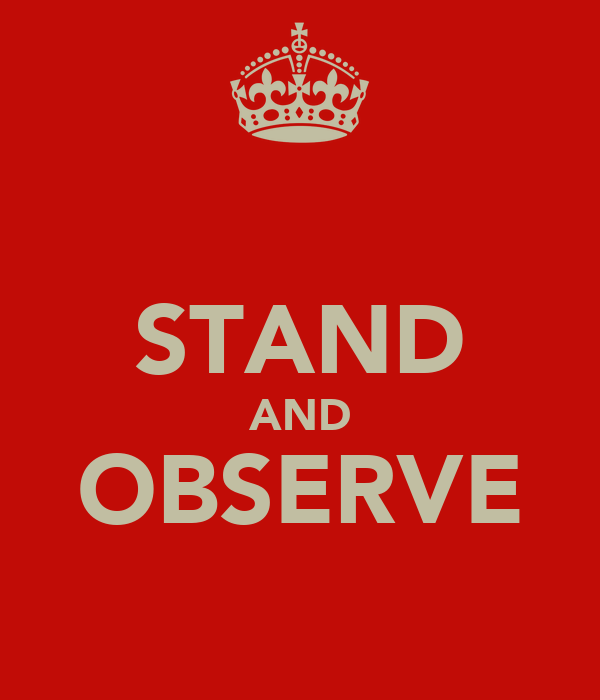 STAND AND OBSERVE