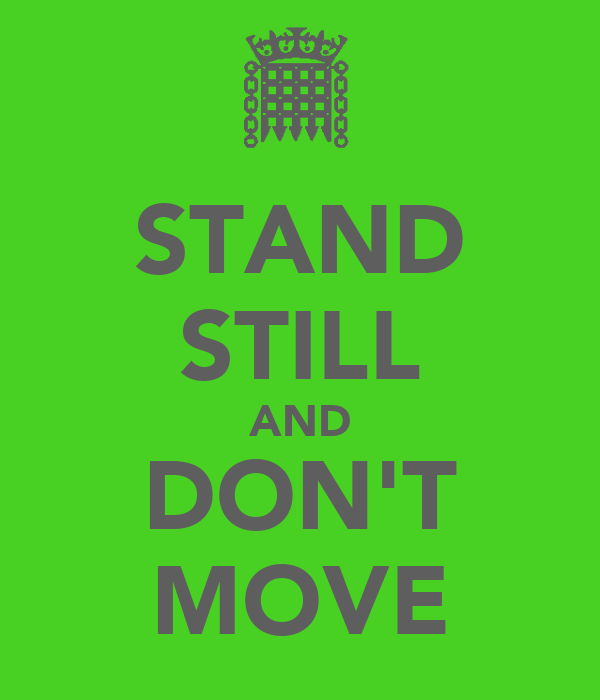 STAND STILL AND DON'T MOVE