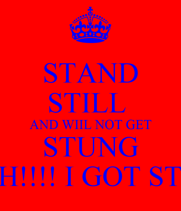 STAND STILL  AND WIIL NOT GET STUNG OUCH!!!! I GOT STUNG