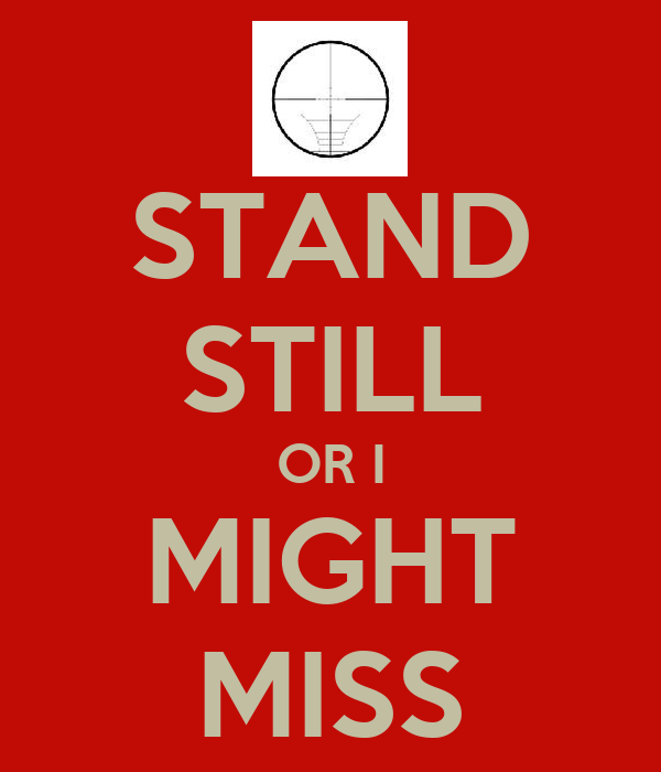 STAND STILL OR I MIGHT MISS