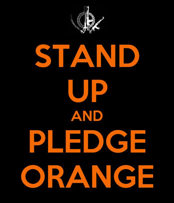 STAND UP AND PLEDGE ORANGE