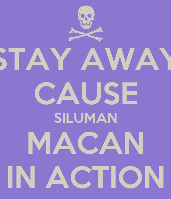 STAY AWAY CAUSE SILUMAN MACAN IN ACTION