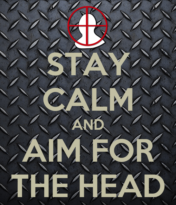 STAY CALM AND AIM FOR THE HEAD