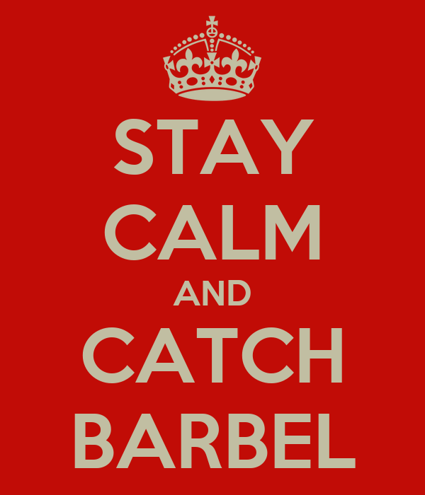 STAY CALM AND CATCH BARBEL