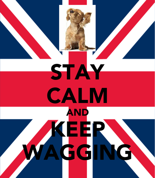 STAY CALM AND KEEP WAGGING