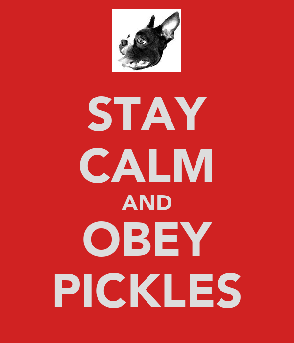 STAY CALM AND OBEY PICKLES