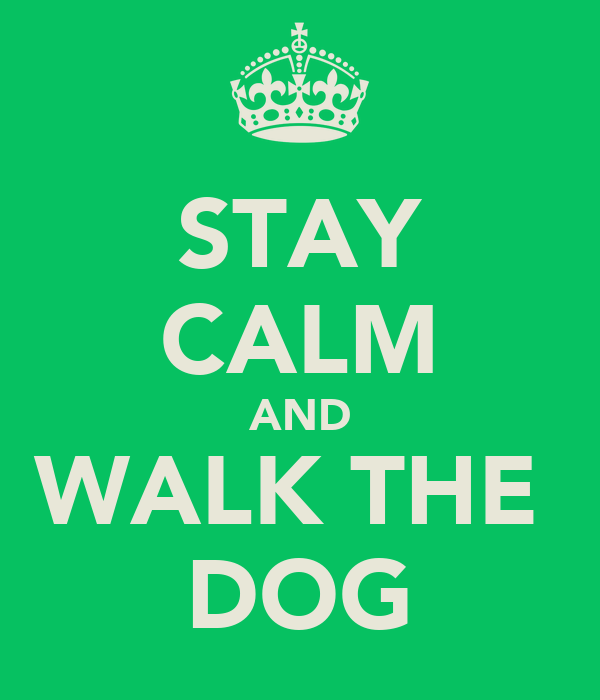 STAY CALM AND WALK THE  DOG