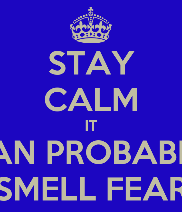 STAY CALM IT CAN PROBABLY SMELL FEAR
