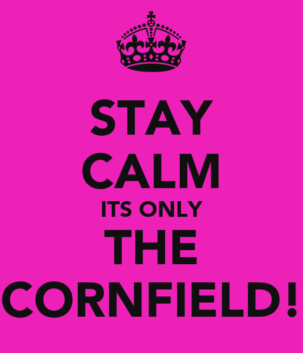 STAY CALM ITS ONLY THE CORNFIELD!