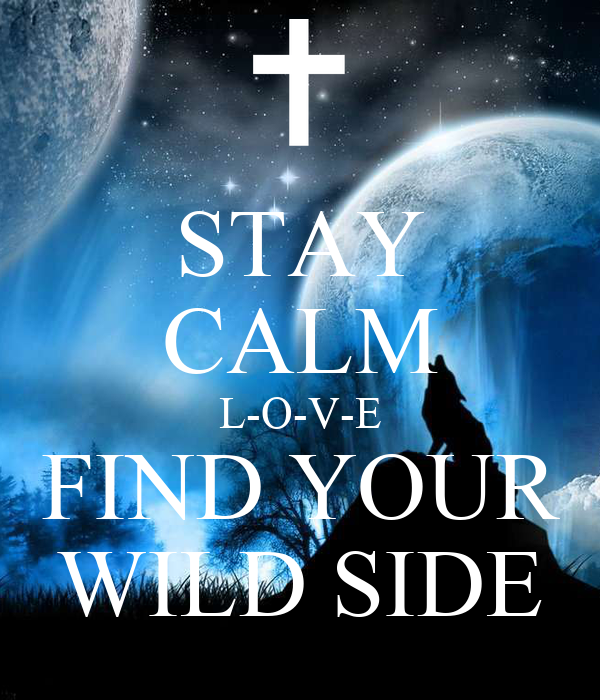 STAY CALM L-O-V-E FIND YOUR WILD SIDE