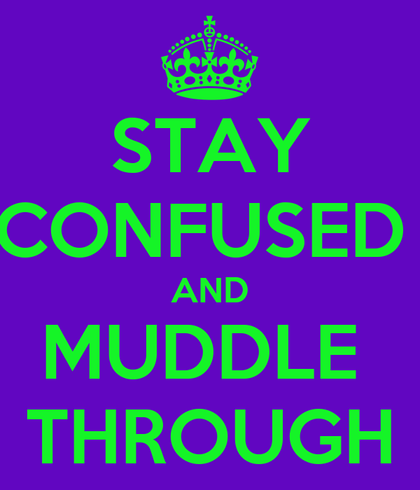 STAY CONFUSED  AND MUDDLE  THROUGH