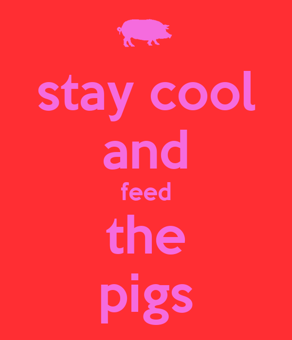 stay cool and feed the pigs