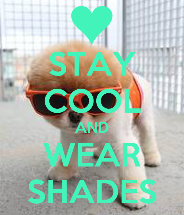 STAY COOL AND WEAR SHADES