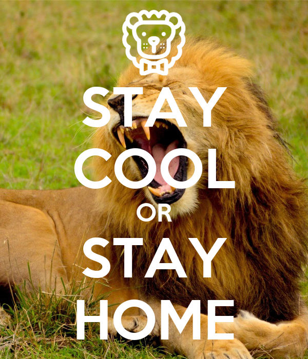 STAY COOL OR STAY HOME