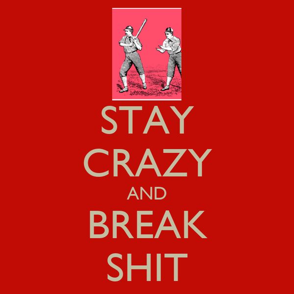 STAY CRAZY AND BREAK SHIT