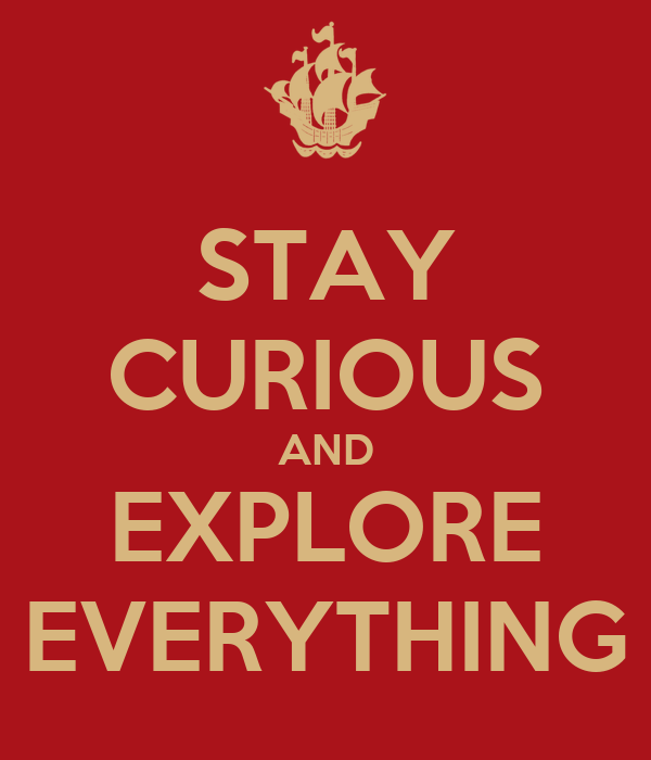 STAY CURIOUS AND EXPLORE EVERYTHING