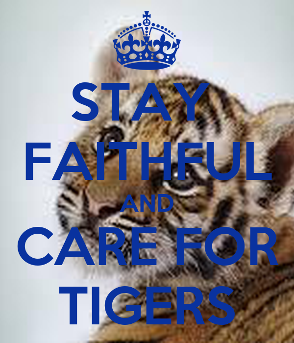 STAY  FAITHFUL AND CARE FOR TIGERS
